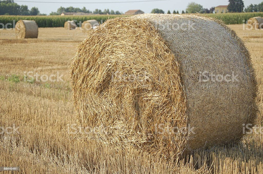 All About Farming royalty-free stock photo