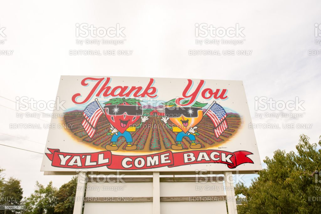 Y'all Come Back Now sign in upstate South Carolina stock photo