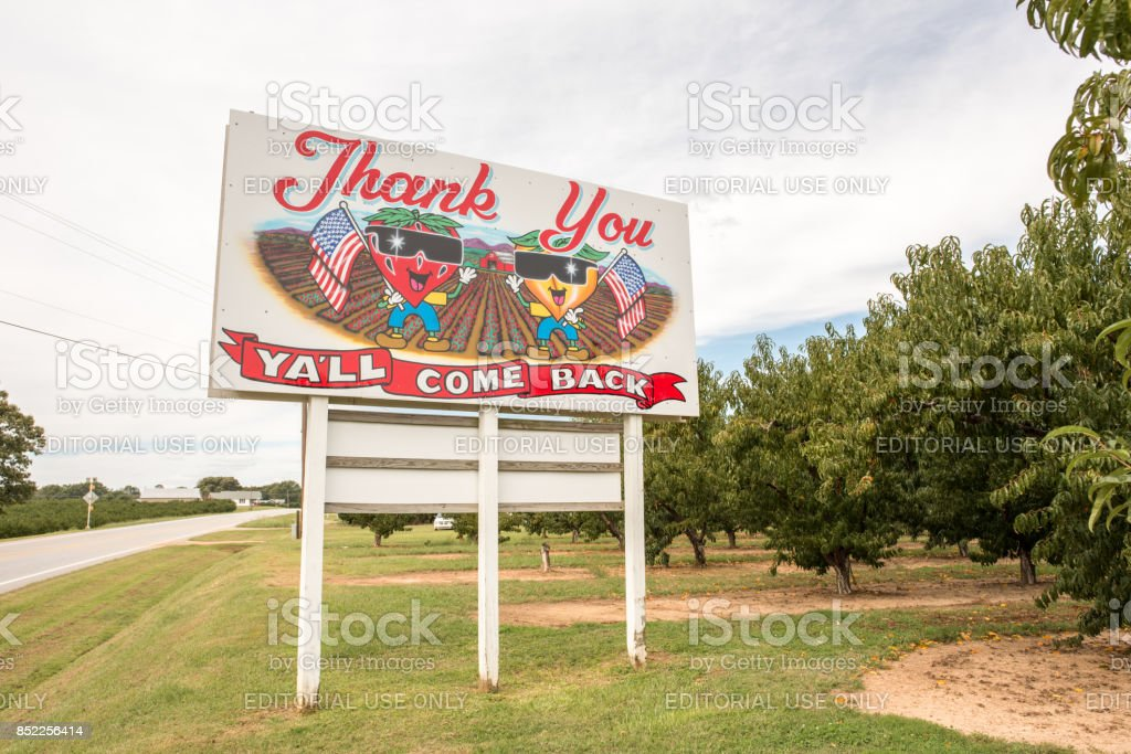 """Y'all Come Back Now sign in upstate South Carolina Cooley Springs, South Carolina, Sept. 10, 2017: A sign for the locally famous Strawberry Hill farm uses the iconic southern phrase, """"Y'all come back now"""" to visitors passing by on the road. Advertisement Stock Photo"""