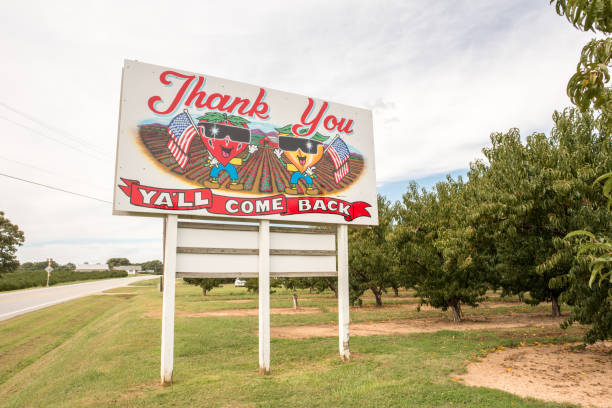 Y'all Come Back Now sign in upstate South Carolina Cooley Springs, South Carolina, Sept. 10, 2017: A sign for the locally famous Strawberry Hill farm uses the iconic southern phrase,