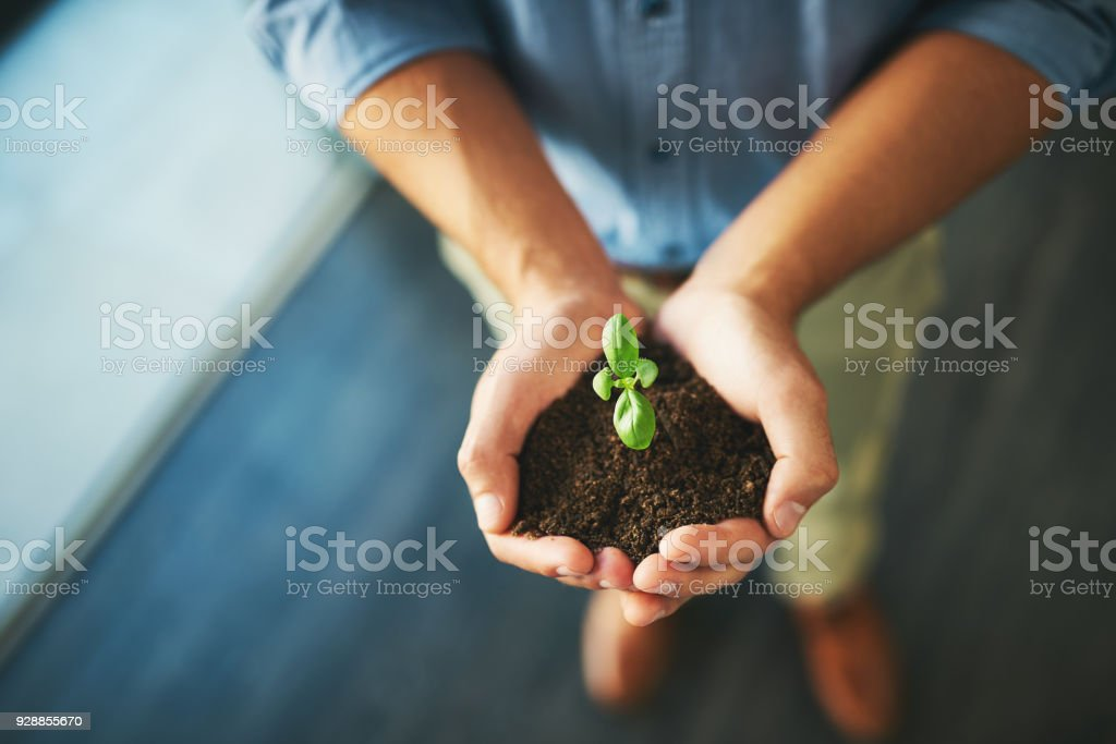 All dreams need to be nurtured first stock photo