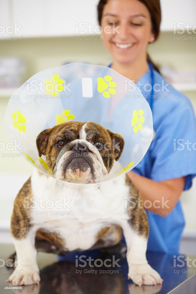 All good to go royalty-free stock photo