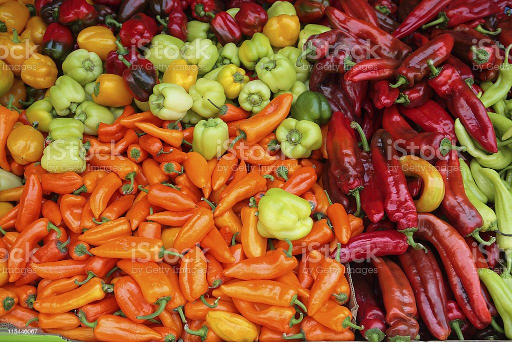 All Peppers royalty-free stock photo