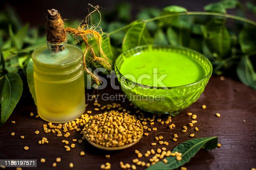 All scalp related problems solution lotion or shampoo in a glass bowl consisting of some neem leaves, fenugreek seeds and olive oil. Shot of fresh leaves of Neem tree,fenugreek seeds,pack,& olive oil.