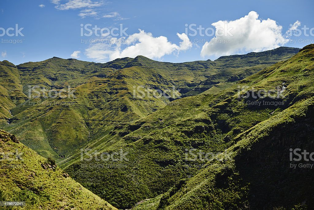 All the beauty of nature royalty-free stock photo