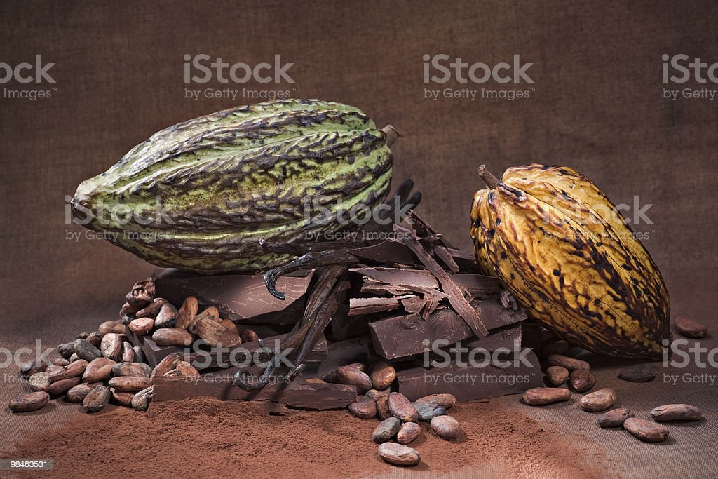 All the different forms of chocolate royalty-free stock photo
