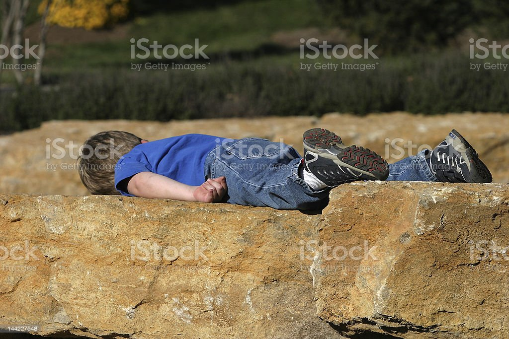 All Tuckered Out stock photo