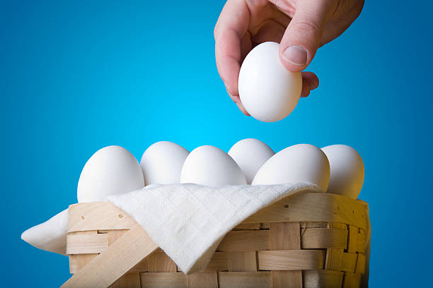 All Your Eggs In One Basket stock photo
