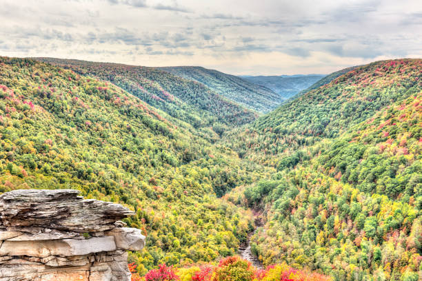 Allegheny mountains in autumn at Lindy Point overlook Blackwater river with Allegheny mountains in autumn at Lindy Point overlook national forest stock pictures, royalty-free photos & images