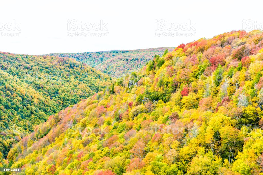 Allegheny mountains in West Virginia autumn with red and golden trees stock photo