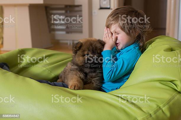 Allergic little boy and puppy relaxing on bean bag picture id538354542?b=1&k=6&m=538354542&s=612x612&h=ic5ihw7el8vzpgew6q6ta6zqdhvxbgfueymuo9uvqkk=