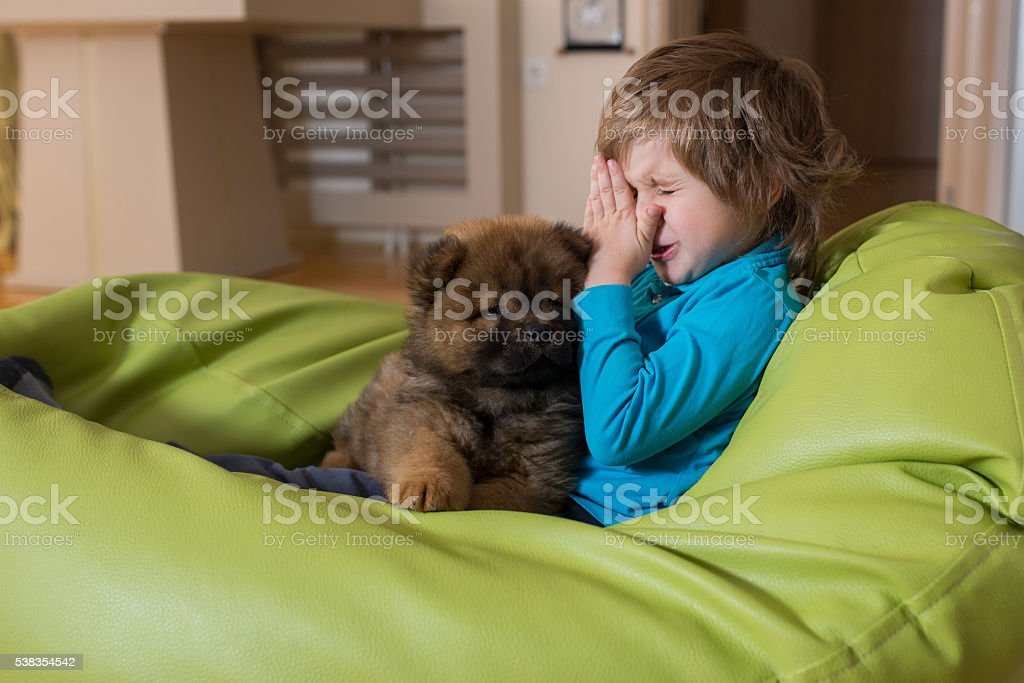 Allergic little boy and puppy relaxing on bean bag. stock photo