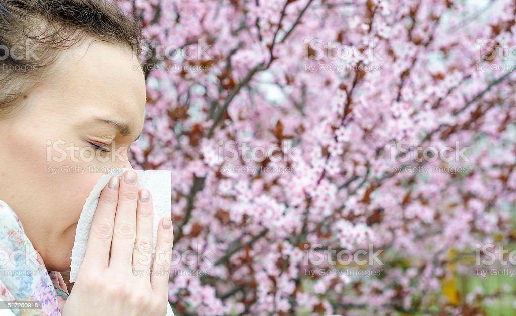 Reações alérgicas de flores da primavera, o pólen, Ambrosia, foto royalty-free
