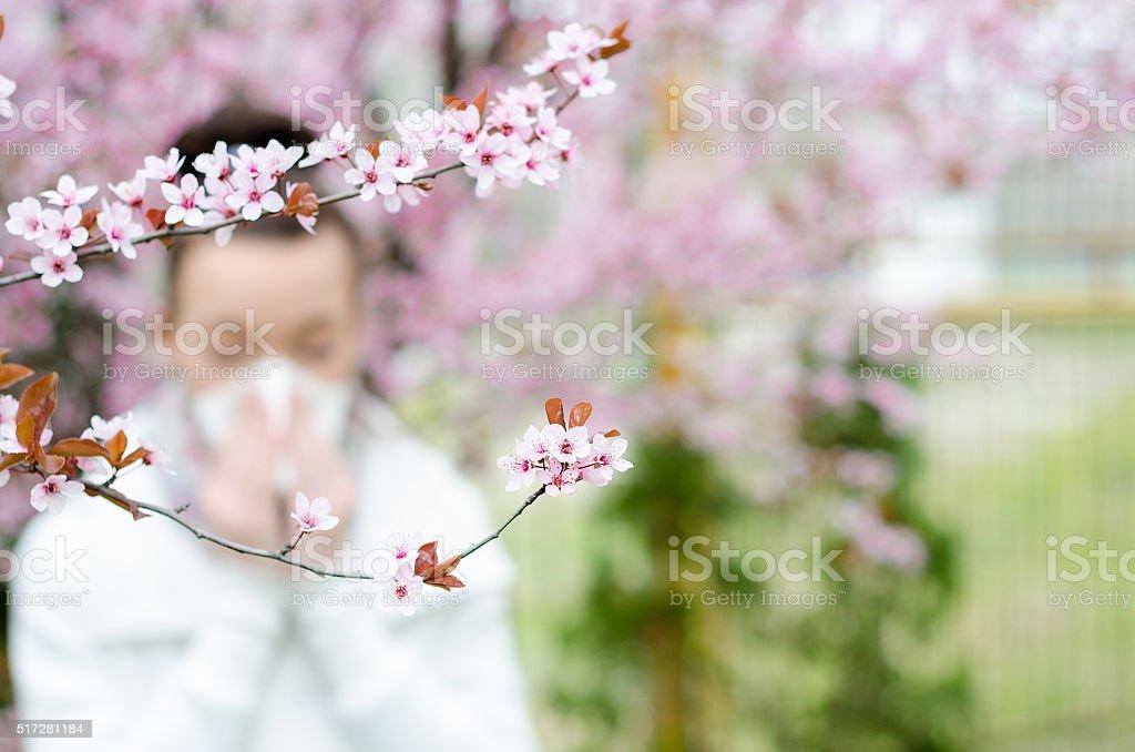 Reações alérgicas de flores da primavera, o pólen, Ambrosia, - foto de acervo