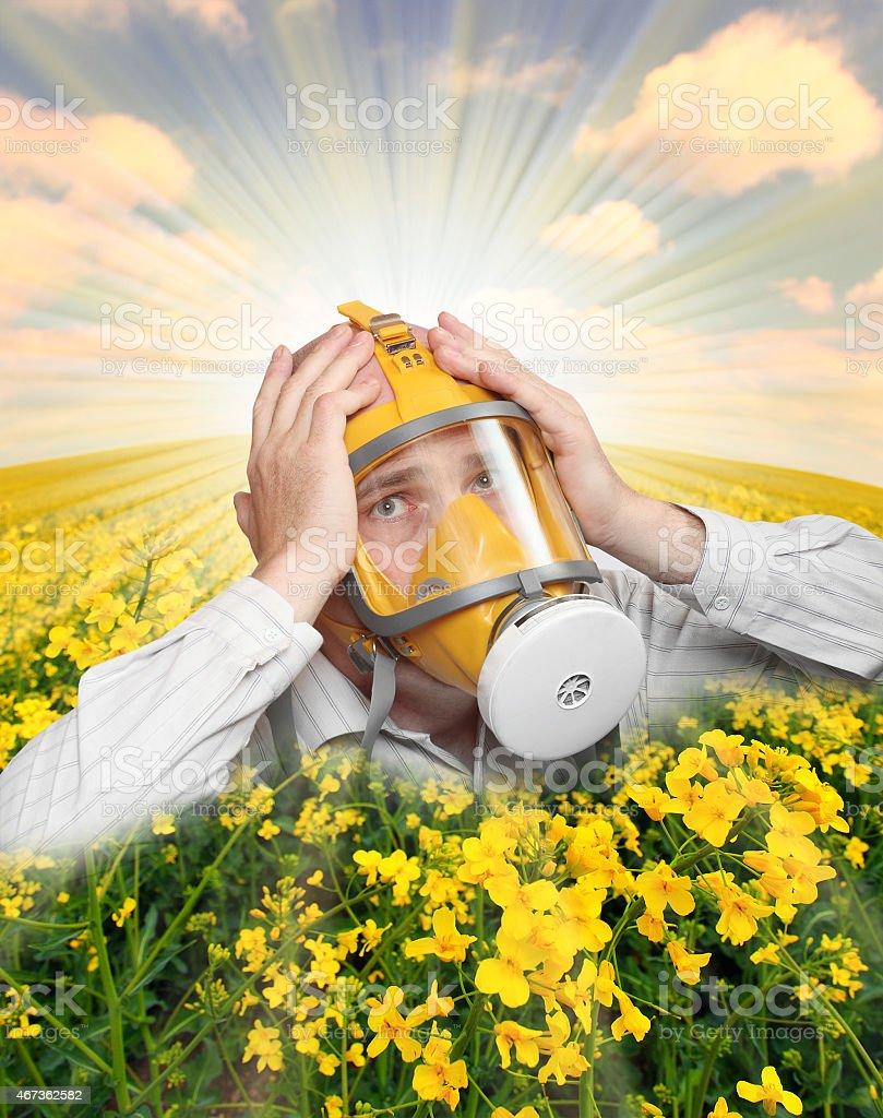Allergy. stock photo