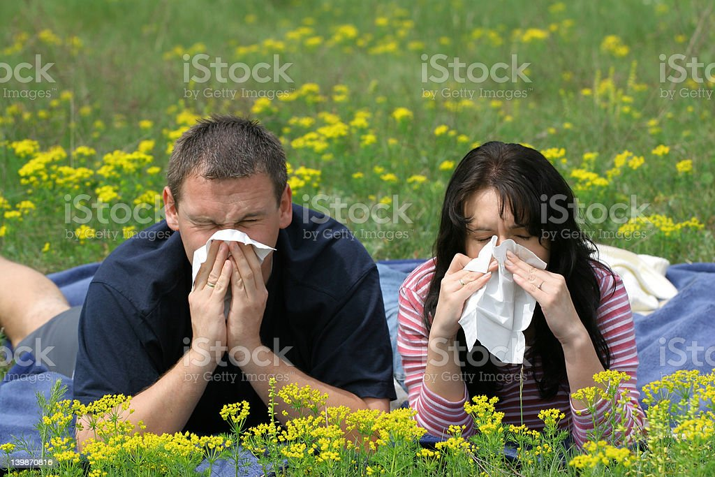 Allergy Sufferers An allergy sufferers blows their noses. Adult Stock Photo