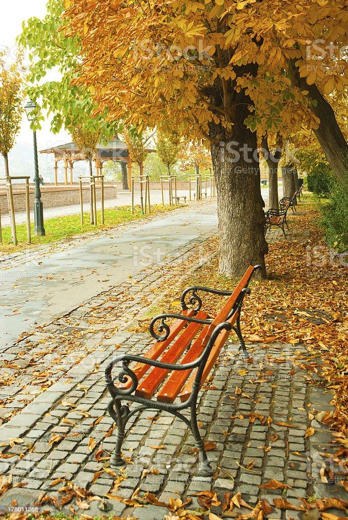 Alley at fall royalty-free stock photo