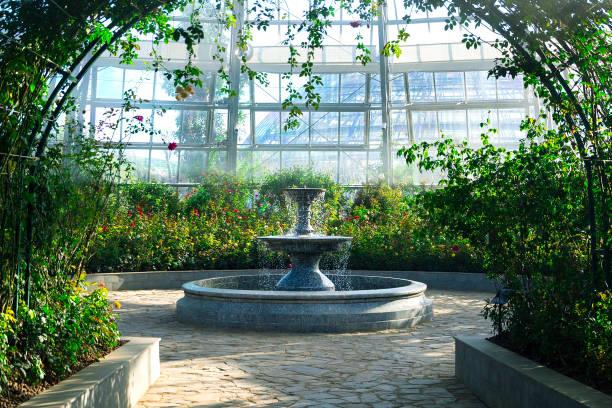 allée dans un jardin botanique menant à une fontaine entourée de fleurs et plantes - fontaine photos et images de collection