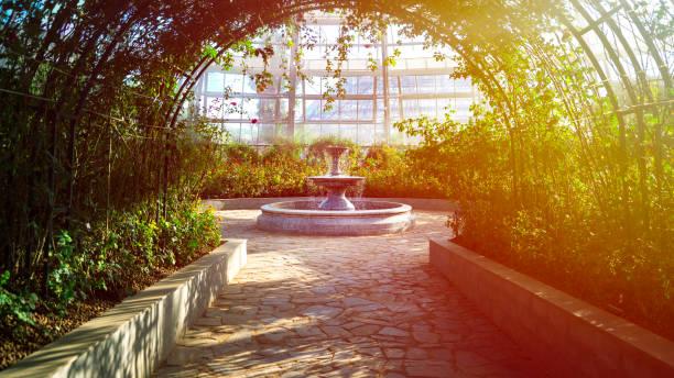 gasse in einem botanischen garten führt zu einem brunnen, umgeben von blumen und pflanzen - sheffield stock-fotos und bilder