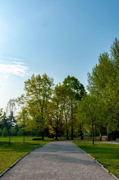 Gasse im Park – Foto