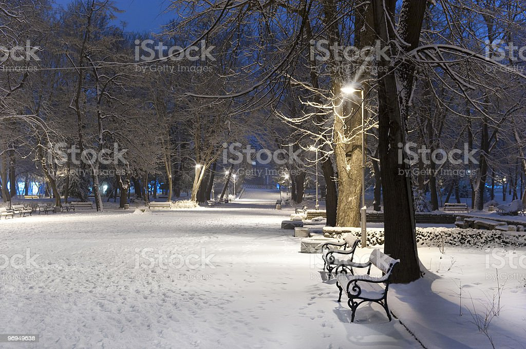 alley in a winter park royalty-free stock photo
