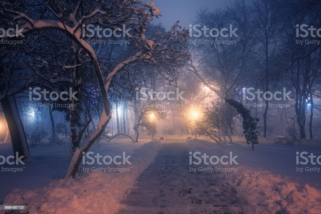 Alley in winter park at night stock photo