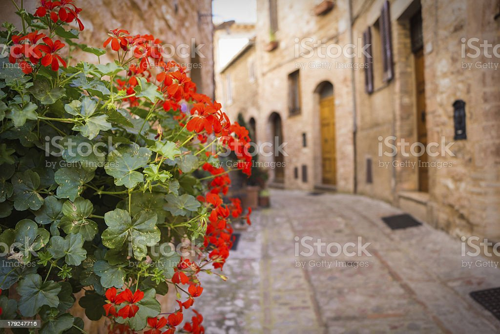 Vicolo con vaso in fiore royalty-free stock photo