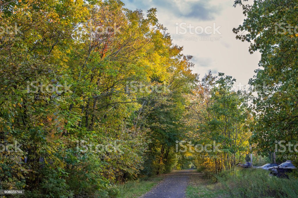 Alley with Trees in Autumn Colors and Two People Walking Away, New...