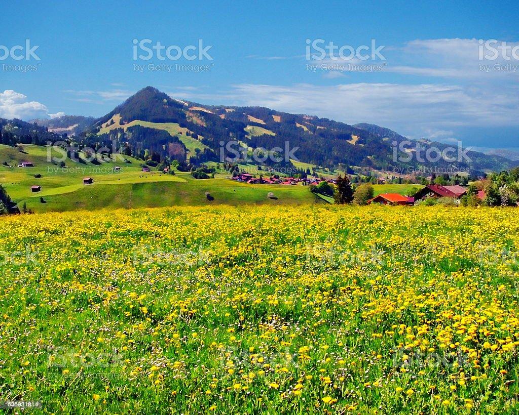 Allgau Region stock photo
