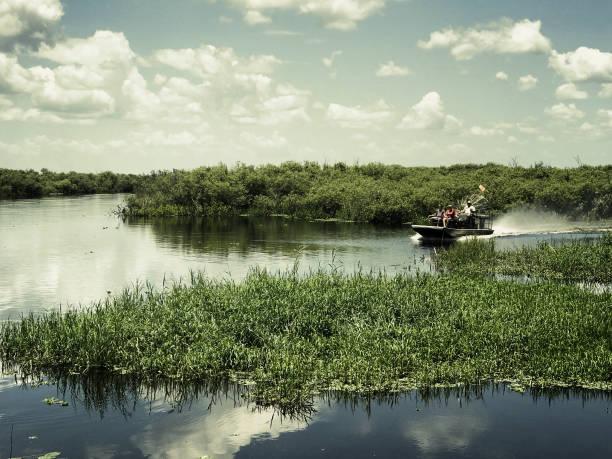 Alligator Airboat Ride in Florida – Foto