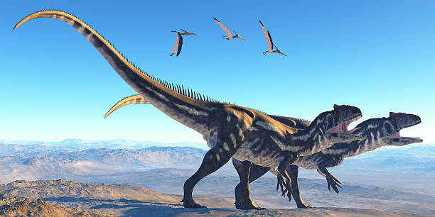 Allosaurus on mountain picture id497615787?b=1&k=6&m=497615787&s=612x612&w=0&h=dx tzsvm5yr7vp4cynq6equz rcdeflx0yzbfbsp 5o=