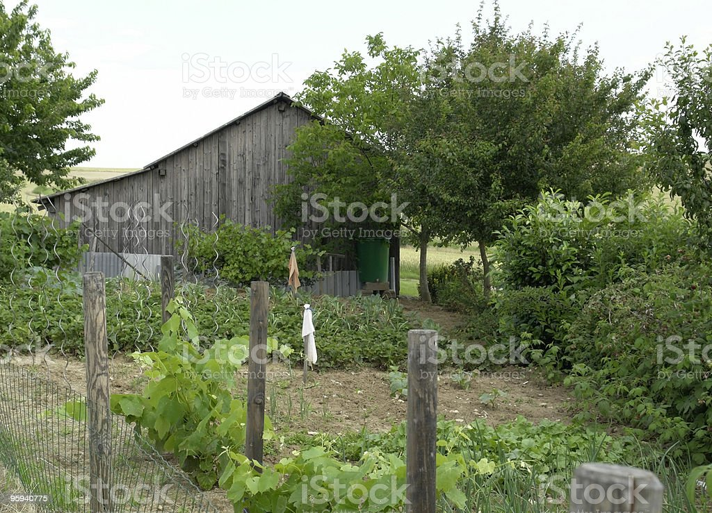 allotment garden and utility shed royalty-free stock photo