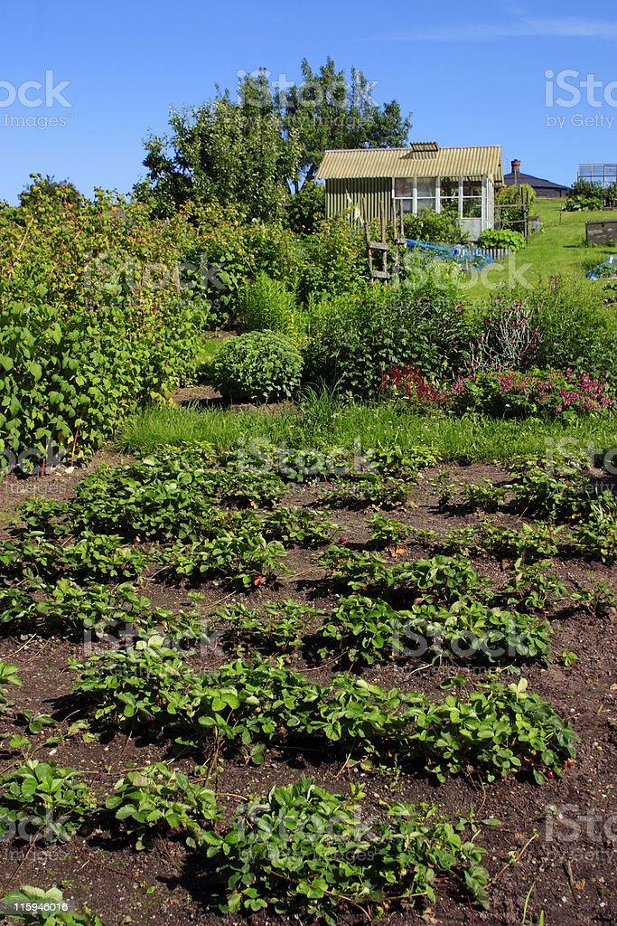 Limite giardino - foto stock