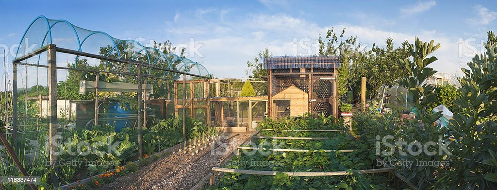 Allotment. royalty-free stock photo