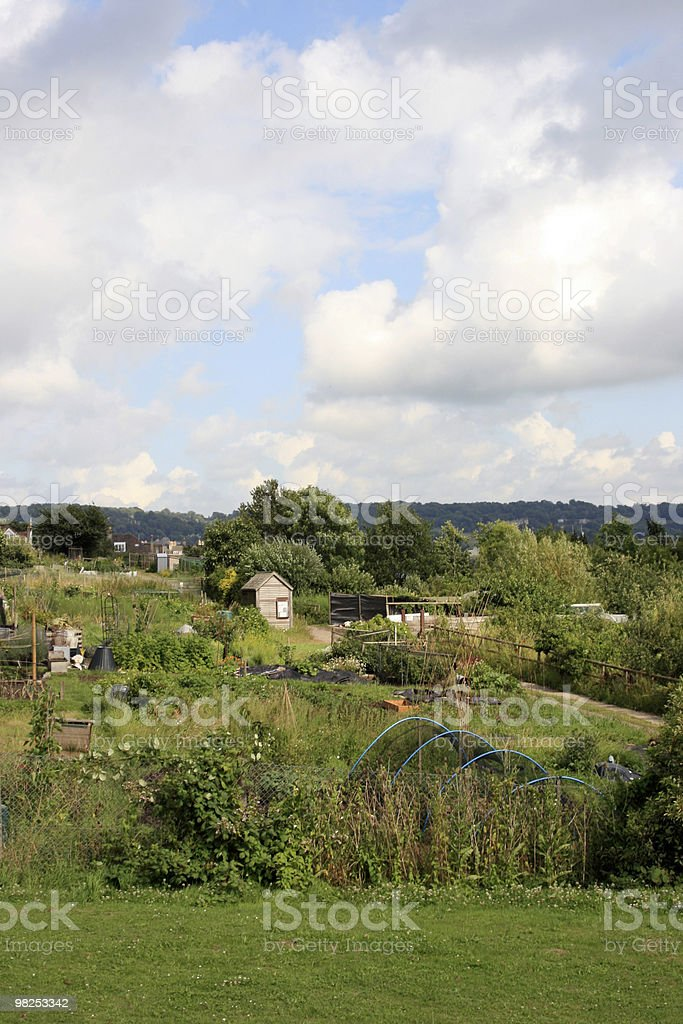 Allotment royalty-free stock photo