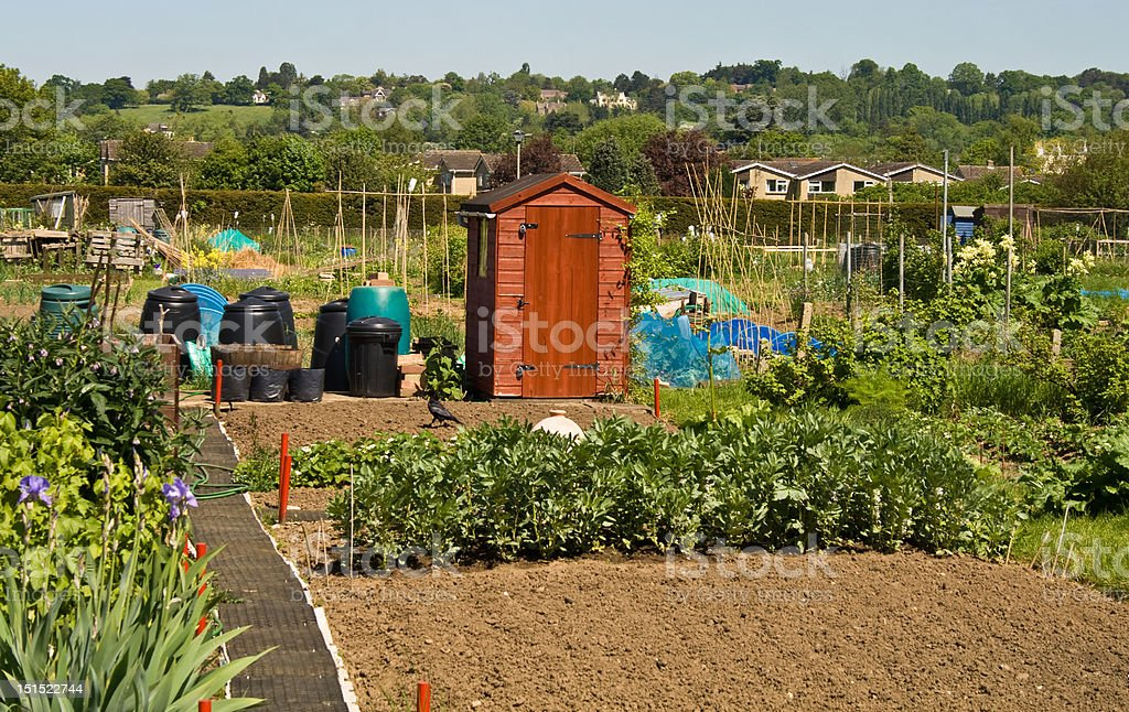Allotment Shed stock photo