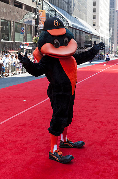 All-star game red carpet New York, USA - JUly 16, 2013: Baltimore Orioles mascot The Oriole Bird poses on red carpet during the MLB All-Star Game Red Carpet Show along 42nd street on July 16, 2013 in New York major league baseball stock pictures, royalty-free photos & images