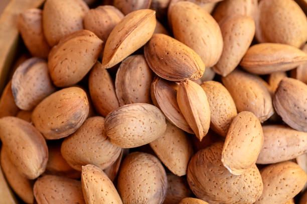 Almond abundance stock photo