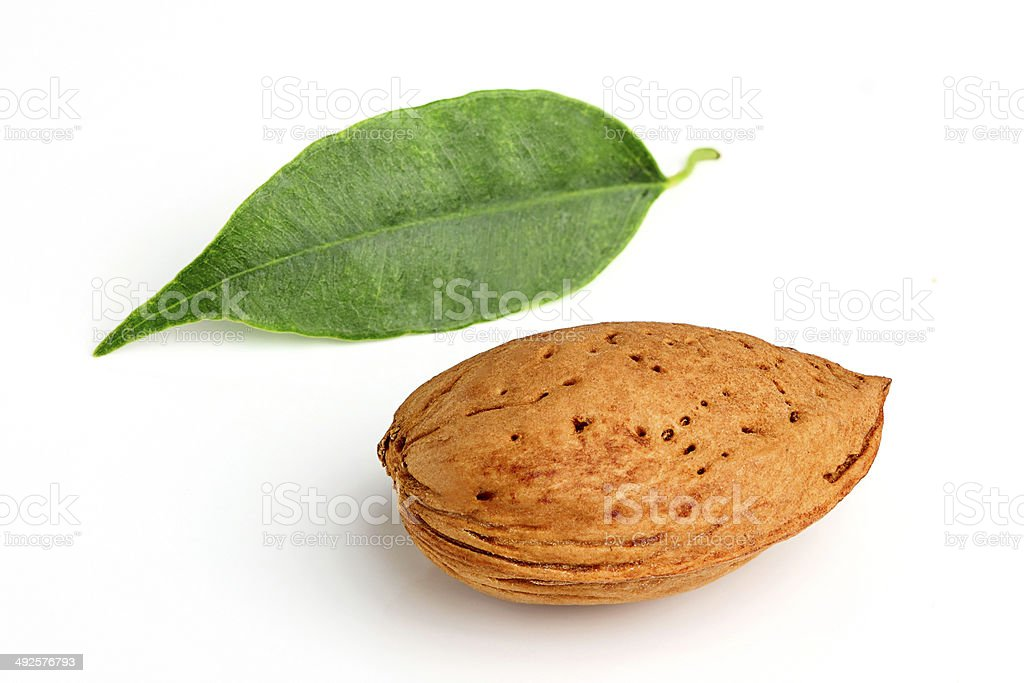 Almond and leaf. stock photo