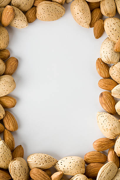 Almond border stock photo