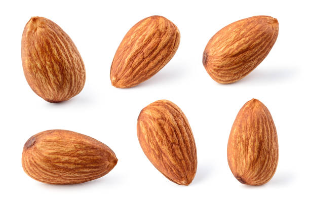 Almond isolated. Almonds on white. Collection. Clipping path. stock photo