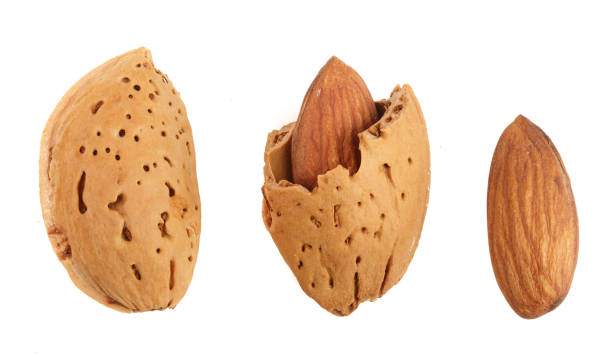 almonds are peeled and unpeeled isolated on white background without a shadow close up. Top view stock photo