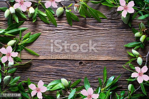 Almonds copy space border frame with almond fruits almond tree flowers branch on rustic wood board background