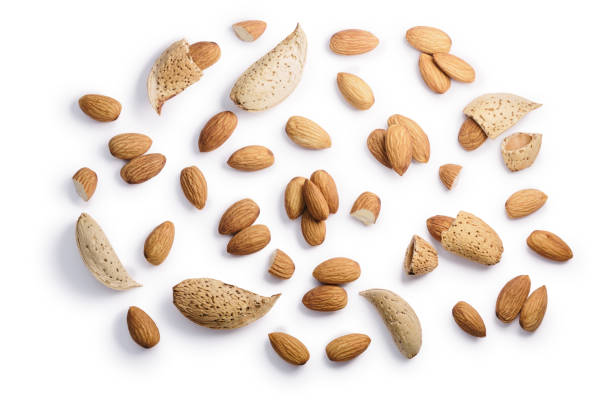 Almonds seeds P. amygdalus, paths, top view stock photo