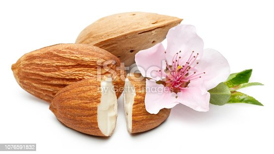 Almonds with flower and leaves isolated on white background. Macro, studio shot.