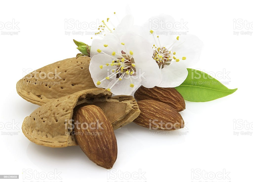 Almonds with flowers royalty-free stock photo