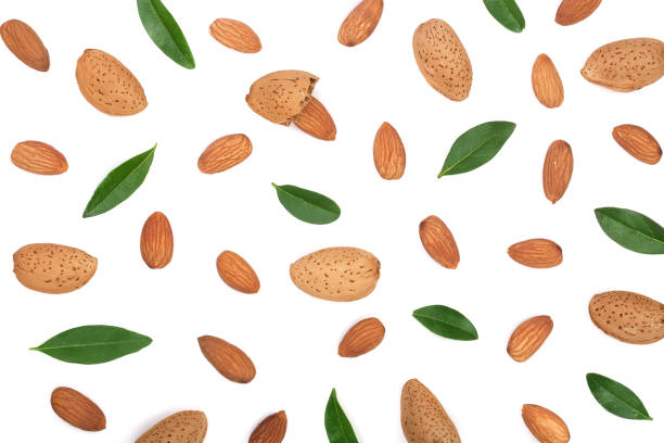 almonds with leaves isolated on white background. Flat lay pattern stock photo