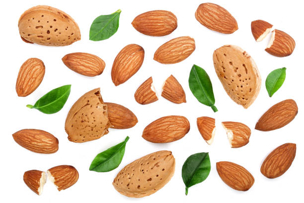 almonds with leaves isolated on white background. Top view. Flat lay pattern stock photo