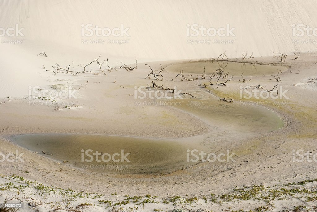 Almost dry pond in desert royalty-free stock photo
