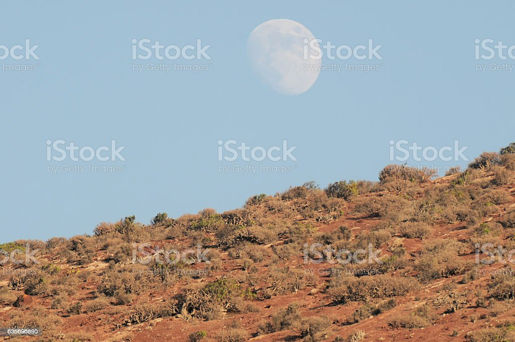 Almost Full Moon over the Mountain royalty-free stock photo